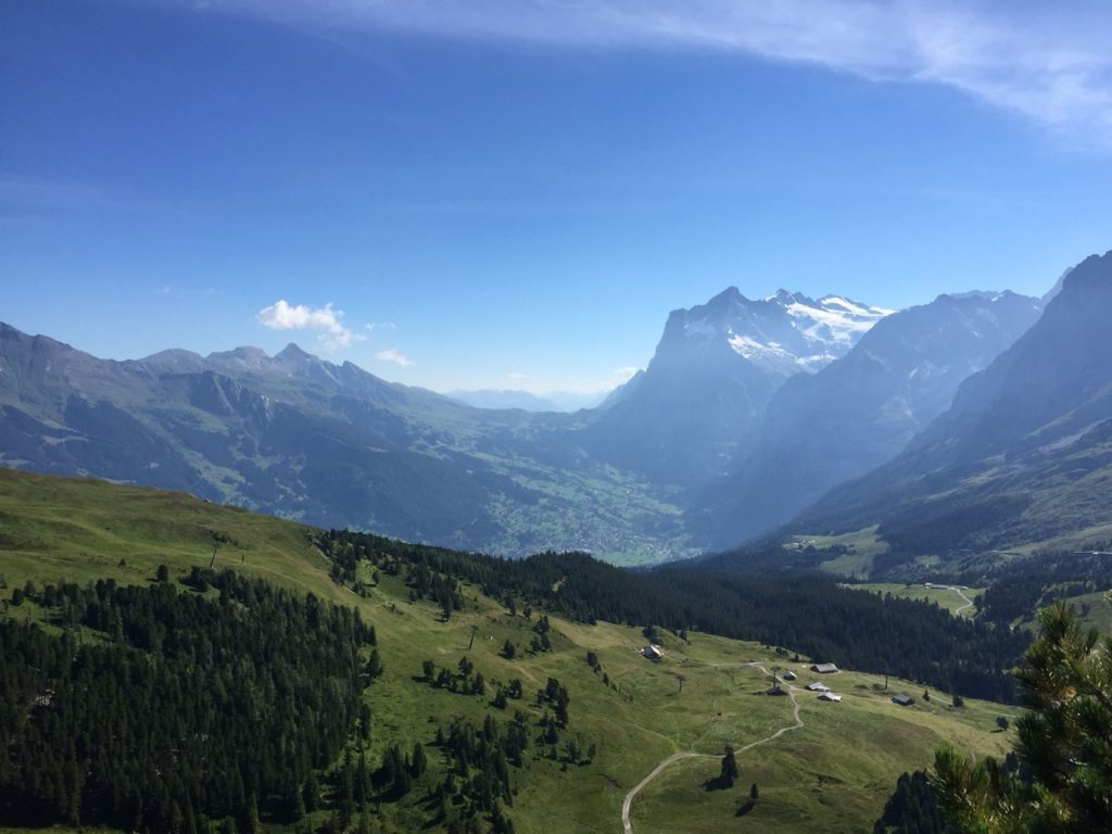 path or track trough the hills in an alpine valley